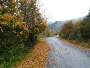 Ruta Ordesa Monte Perdido - Saltamontes