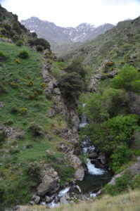 Ruta Vereda de la Estrella - Saltamontes