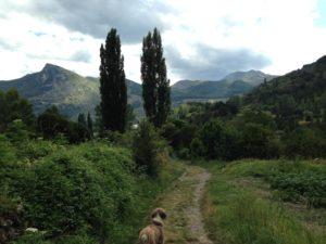 Rutas en Ordesa y Monte Perdido - Saltamontes
