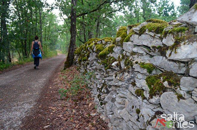 Vía Gebenennsis